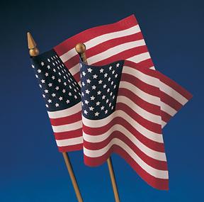 MS-FLAG-002.jpg